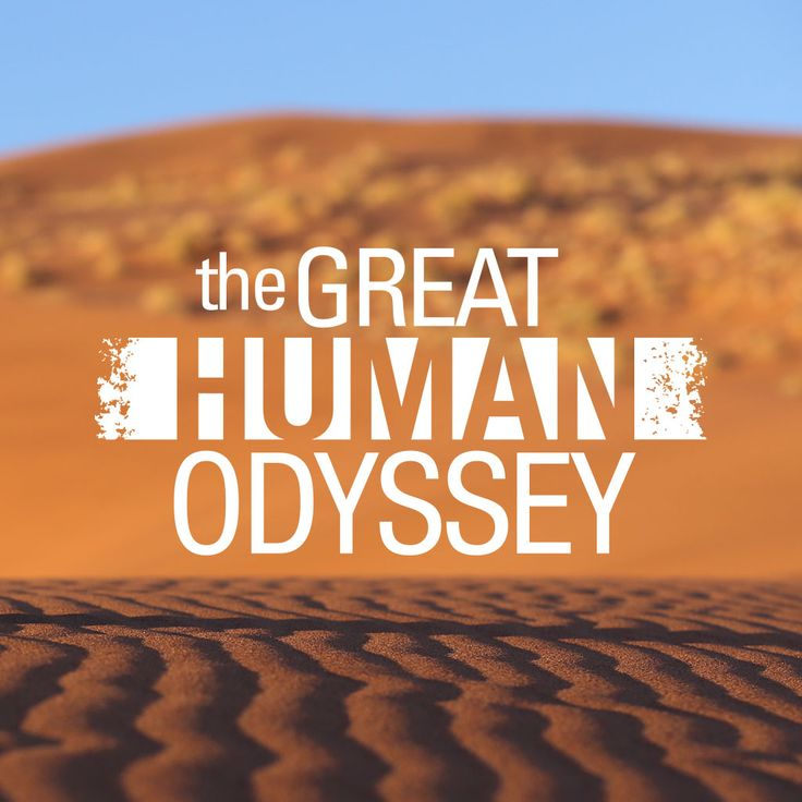 A listing of recent The Great Human Odyssey episodes.