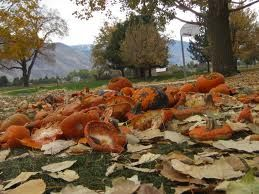 Pumpkin Chunkin Days & Other Peculiar Holidays