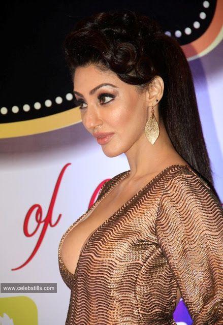 celebstills: Reyhna Malhotra HOT At The 8th ZEE TV Gold Awards 2015 in Filmistan, Mumbai