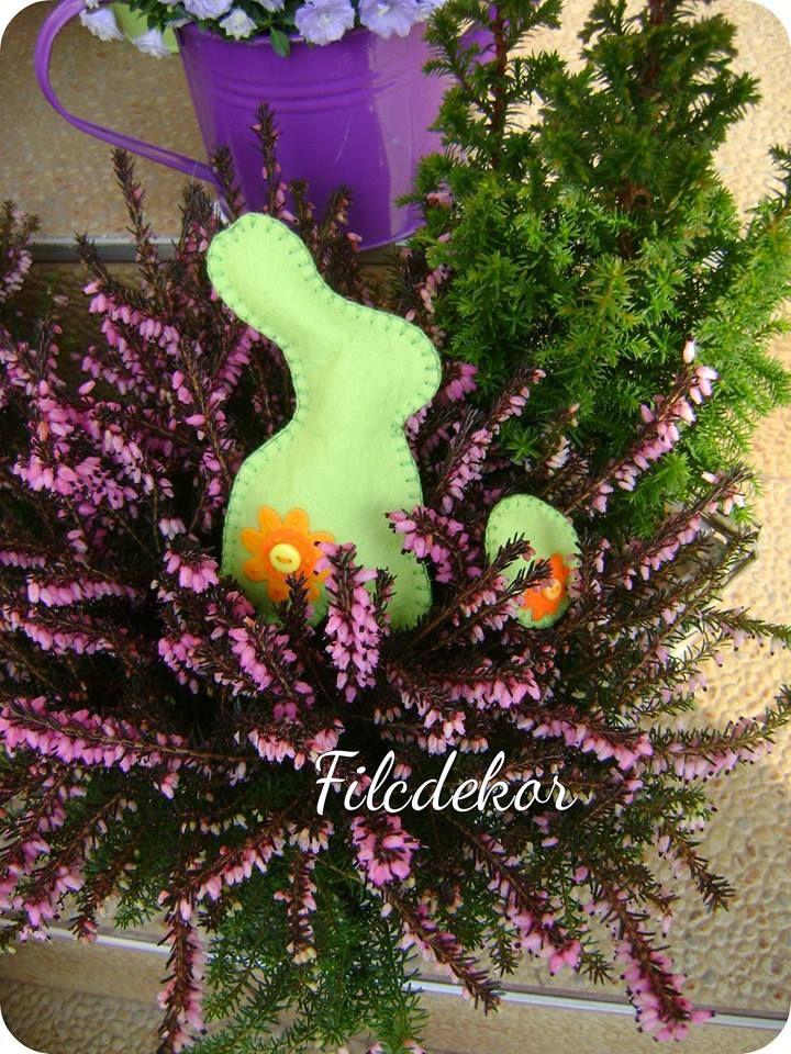 green bunny/ zöld nyuszi