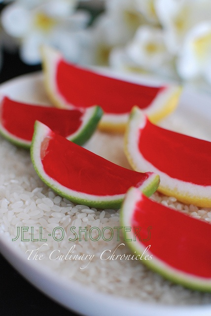 Jell-O Shooters by The Culinary Chronicles