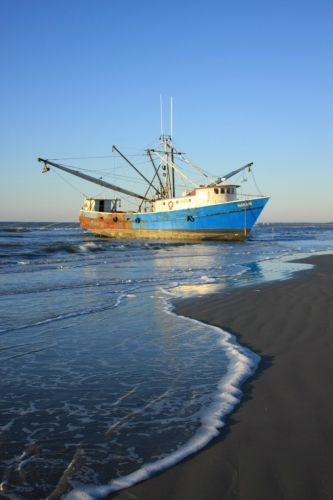 165 best images about south carolina smiling faces for Kiawah island fishing