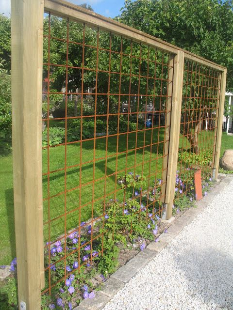 The Tages garden: Trellis of rebar.