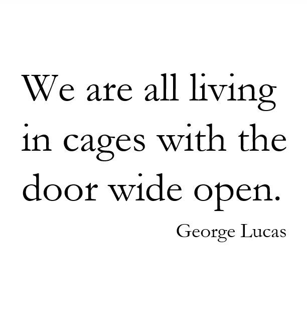 We are all living in cages with the door wide open. ~George Lucas. (scheduled via http://www.tailwindapp.com?utm_source=pinterest&utm_medium=twpin&utm_content=post113910503&utm_campaign=scheduler_attribution)