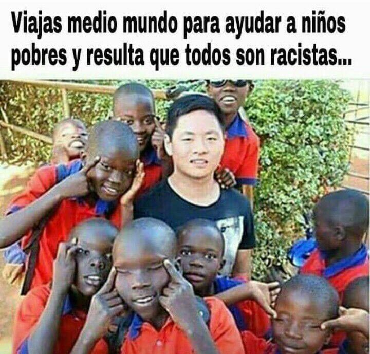 c80253c714fdae47a8181d26a4916233 stupid funny racist 58 best memes images on pinterest hilarious pictures, ha ha and
