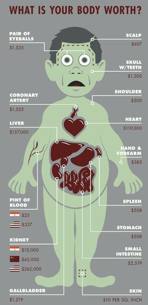 infographics: what is your body worth?