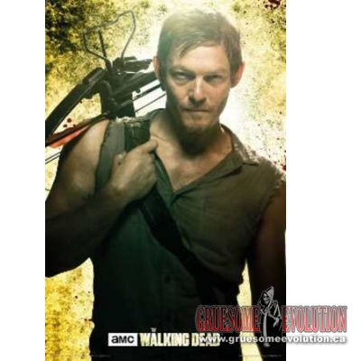 Official poster from The Walking Dead. Poster shows Daryl Dixon standing with his Crossbow slung over his shoulder. Poster is new and measures 24x36.