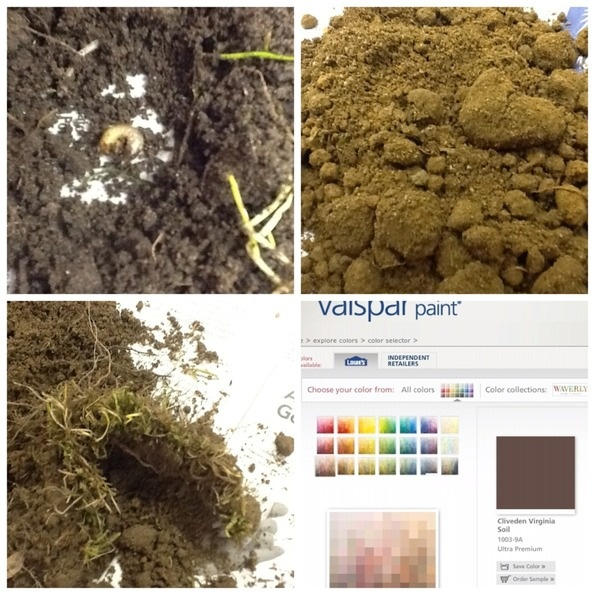 17 best images about soil on pinterest different types for Why are soils different
