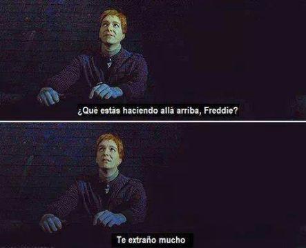 Frases y curiosidades de Harry Potter que te hacen llorar o reir (con imagenes bonitas) - Frase 29 - Wattpad