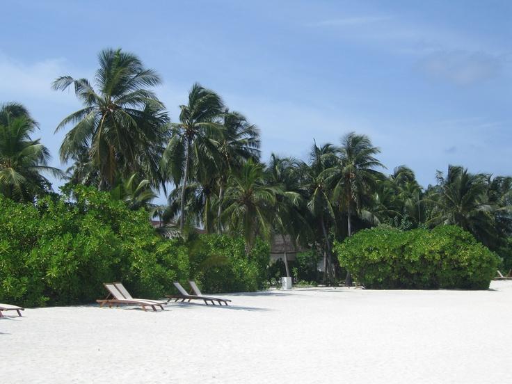 Beach Maldives