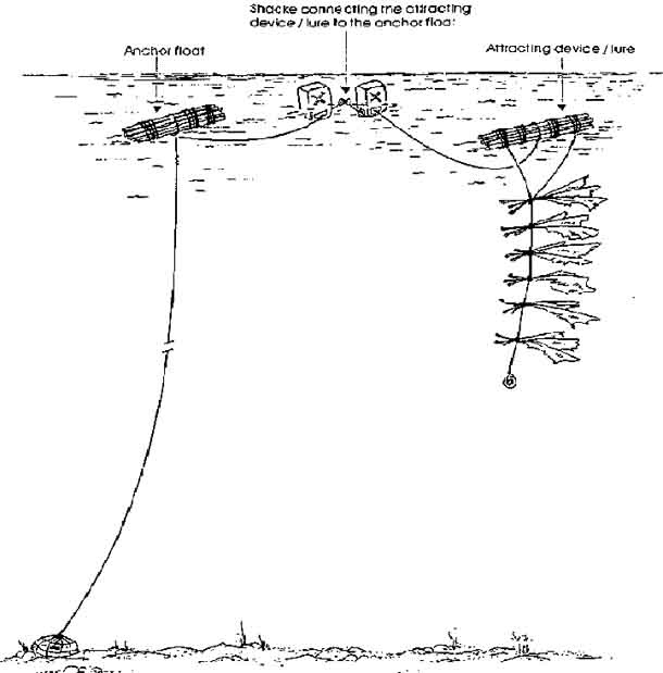 Fish aggregating devices: floating raft of rope, matting or other material anchored to the seafloor; attracts some pelagic fishes