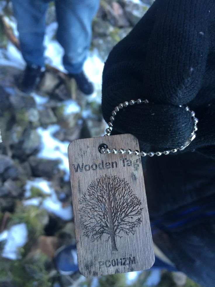 This is interesting. It looks like a wooden TB tag. #geocaching #IBGCp