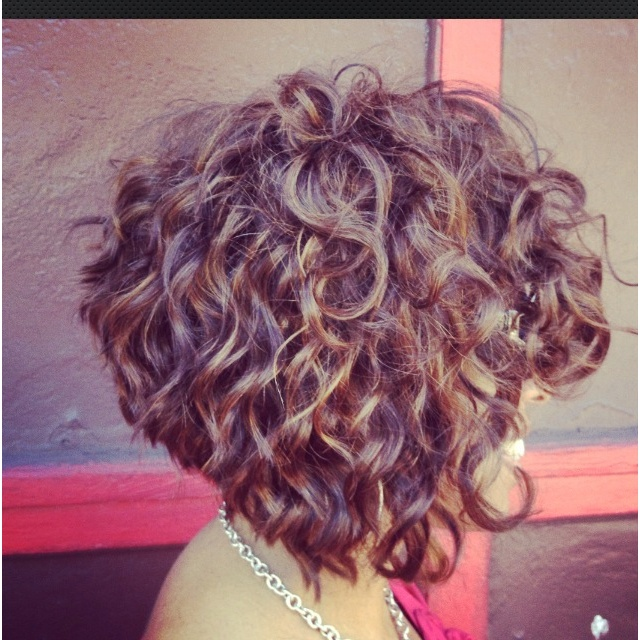 how to do curly hair styles 44 best images about curly styles on bantu 8040
