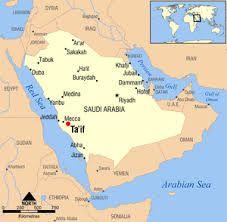 """Ta'if (in arabo: الطائف, al-Ṭāʾif) è una città della Provincia della Mecca, in Arabia Saudita, e capitale estiva del Regno; sorge a un'altezza di più di 1800 metri s.l.m., sui fianchi della catena montuosa del Sarat e aveva una popolazione di 521.273 abitanti nel 2004. La città è centro agricolo di una certa importanza e da quasi due millenni vi si coltiva la vite e l'uva detta zibibbo (dall'arabo zabīb, ossia """"uva passita"""") e vi si produce miele."""