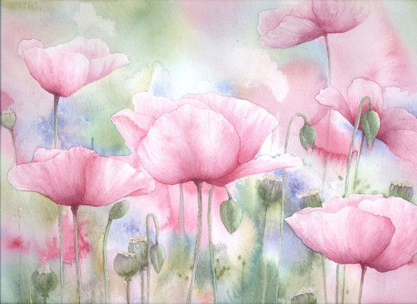 Field of Pink Poppies by louise-art on DeviantArt