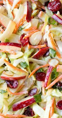 Apple Cranberry and Almond Coleslaw Recipe ~ Here you get the perfect fall inspired coleslaw with it's addition of apples, cranberries and almonds and it's covered in a lighter Greek yogurt dressing #healthy(make your own healthy mayonnaise or use veganaise)