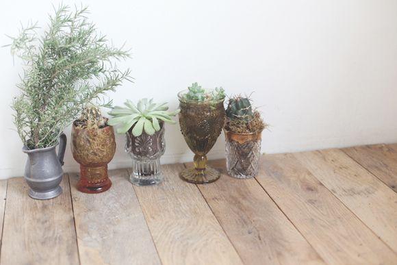 Simple Decor Idea: Plants & Kitchenware   Free People Blog #freepeople
