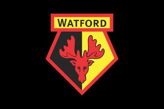 Watford FC Logo small