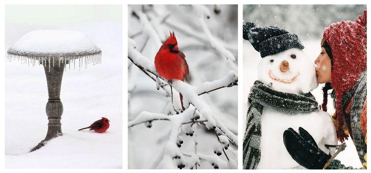 В гармонии с природой | Студия дизайна – REPLICO