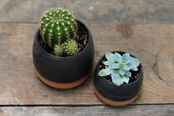 LET op: Dit item bestaat op dit moment te bestellen en zal het schip in 6-8 weken.  Deze kleine succulente potten werden gegooid op een wiel van potter in een hazelnoot bruin aardewerk klei en hebben een klein gaatje voor de afwatering. Voeg gewoon een sappig, cactus of zelfs sommige kruiden om te juichen te brengen aan uw keuken, slaapkamer of kantoor.  Deze aanbieding is voor een dimlicht succulente plantenbak met ruwe klei bodem.  REGELMATIGE maatregelen ca. 3 1/4 inch hoog en 3 1&#x2...