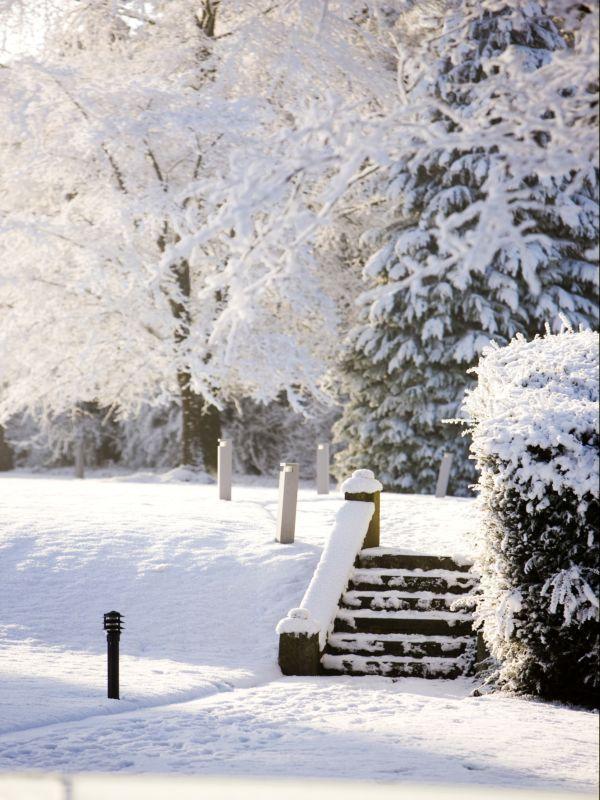 Farnham Estate at Christmas