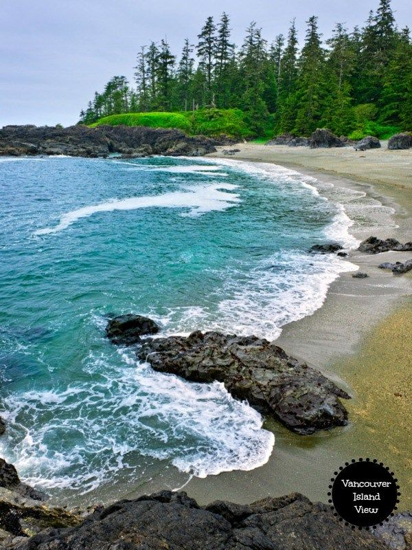 Here are the top things to see and do while out exploring the Pacific Rim on Vancouver Island's West Coast.