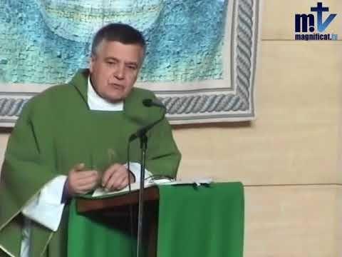 MI RINCON ESPIRITUAL: Evangelio y Homilía de hoy lunes 13 de noviembre d...