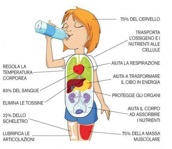 L'acqua: indispensabile per il nostro organismo