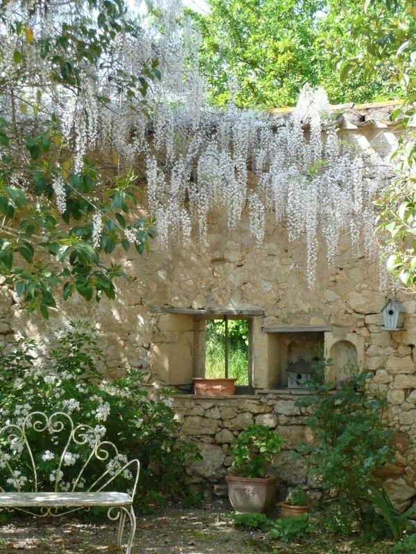 Magnifique glycine blanche top pinterest photos for Jardin romantique anglais