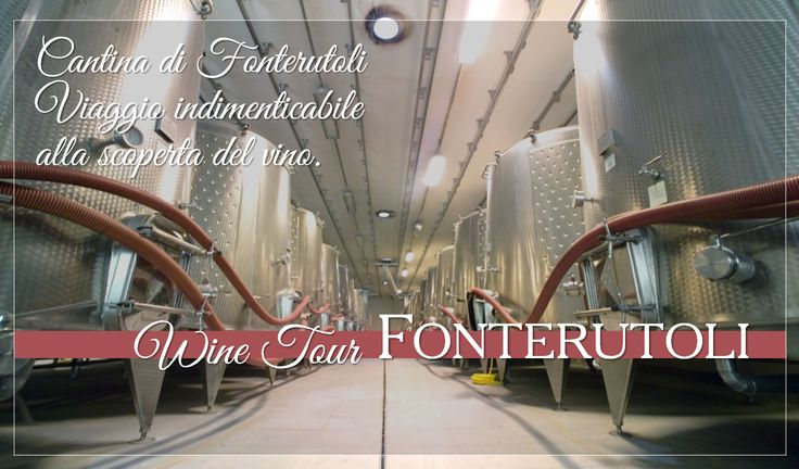 Cantina di Fonterutoli. Unforgettable journey to wine discovery. For reservations for large groups contact our Enoteca at enoteca@fonterutoli.it @marchesimazzei #winetour #MarchesiMazzei #Fonteurutoli