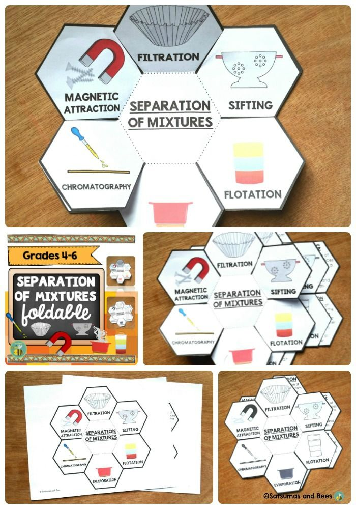 25+ best ideas about Interactive science notebooks on Pinterest ...