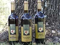 First Texas Olive Oil and Blackberry Wine... Tours... Wimberly Texas