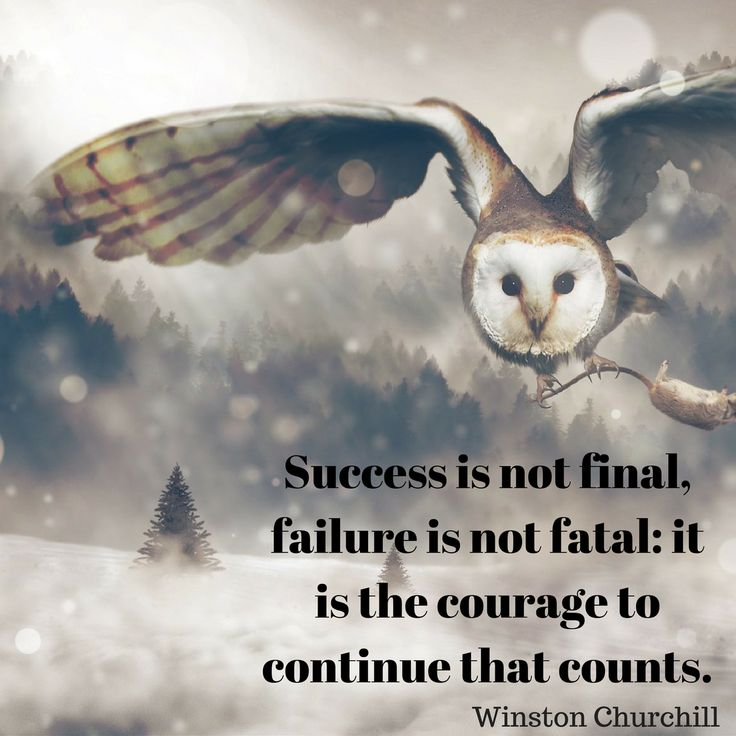 Success is not final and failure is not fatal.