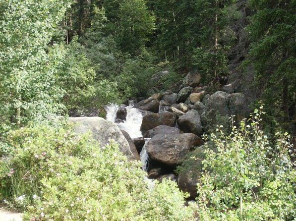 Columbine Lake Trail TR 11.1