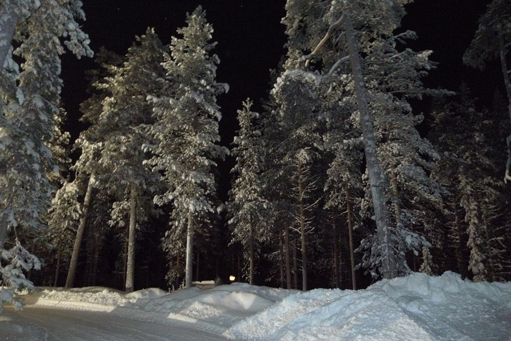 """Foto 33 - Navidad 2012 en Laponia - Familia Coloma""  Viaje a Laponia | PapaNoelEnLaponia | Viaje a Laponia Papa Noel | Papa Noel Laponia | Viajar a Laponia"
