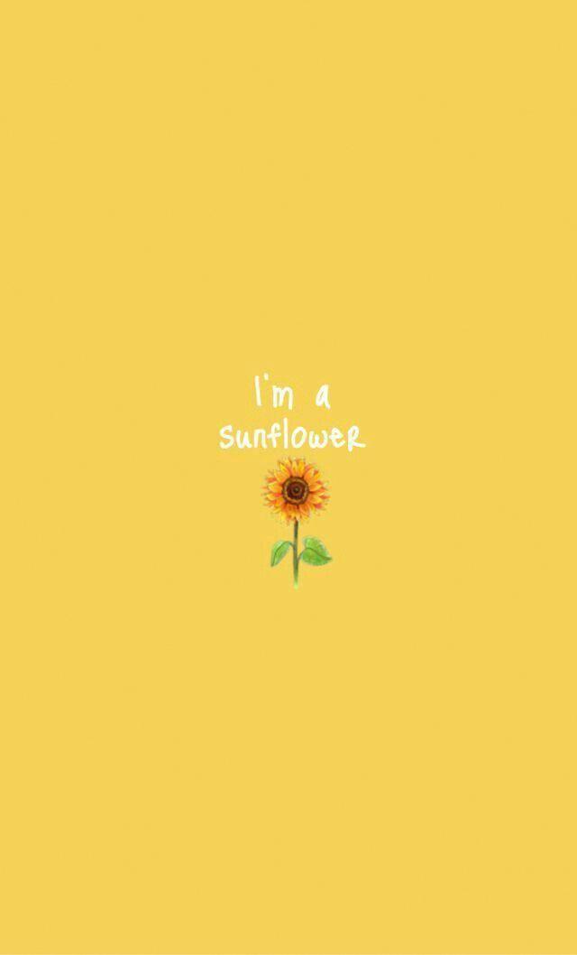 Sou Um Girassol Yellow Wallpaper Ueanna Iphonewallpaper