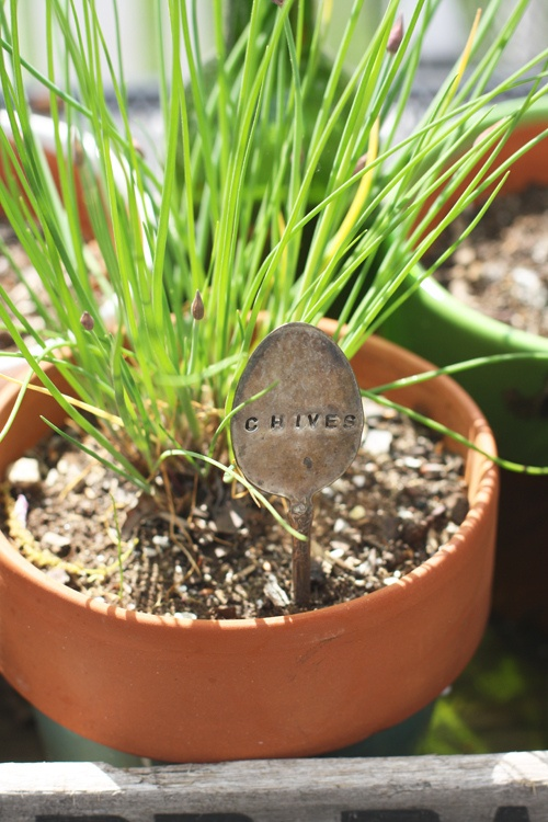 Love this spoon name plate for a herb garden.