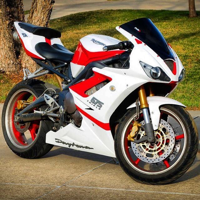 best 25+ triumph daytona 675 ideas only on pinterest   sport bikes