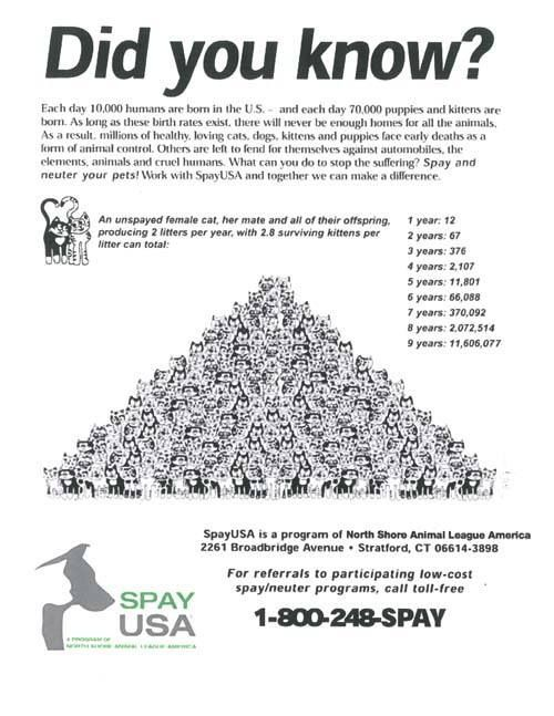 Spay and neuter! Pet Facts/Infographics Pinterest