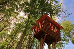 Építs fára házat