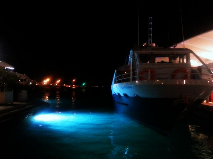 boat in the night