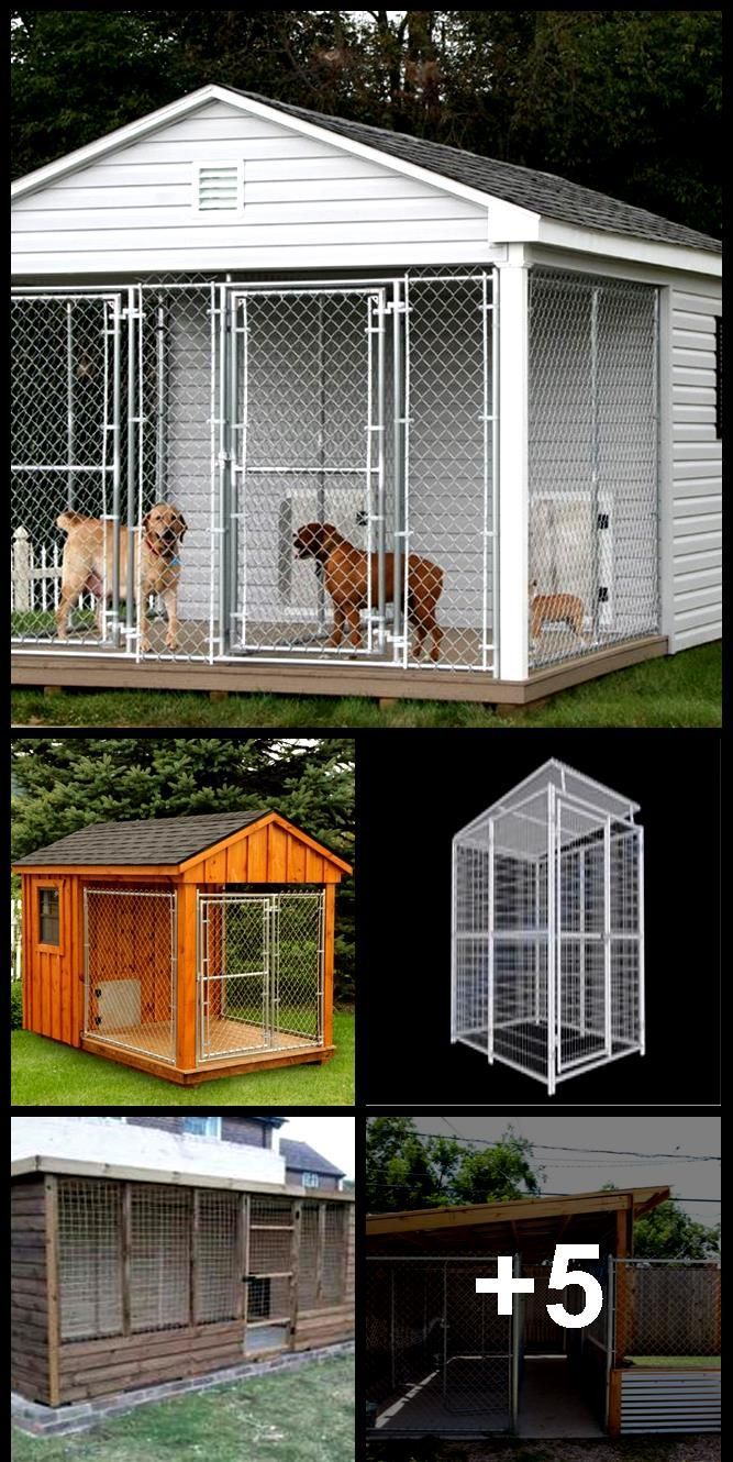 Dog Kennels Dog Kennel With Solid Roof 6 X8 1150 Rhino Dog