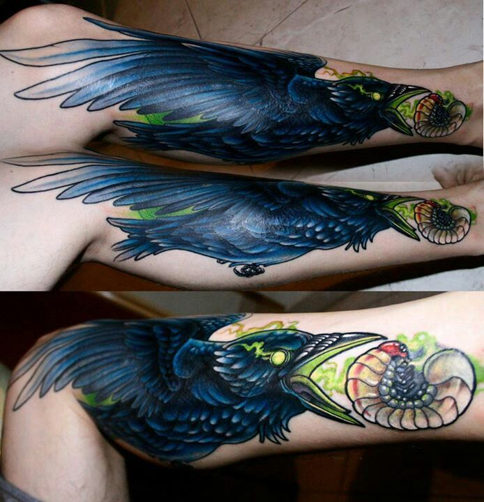 1000 images about tattoos crow raven on pinterest. Black Bedroom Furniture Sets. Home Design Ideas