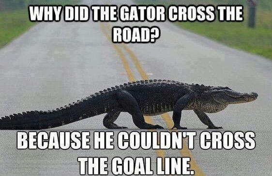 The Gators Suck 60