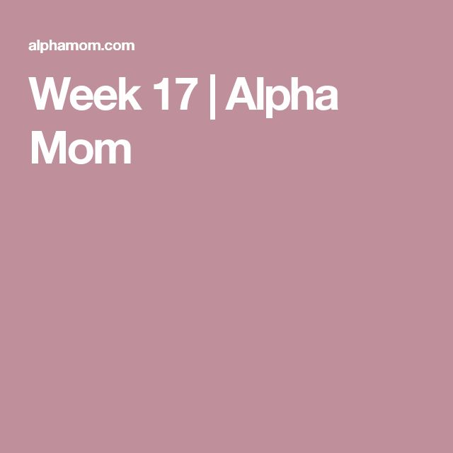 Week 17 | Alpha Mom