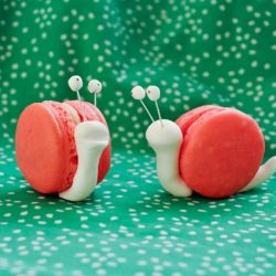 Vanilla macaron make the shells for these cute snails!