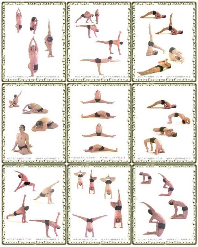 Yoga yoga poses and basic yoga poses on pinterest