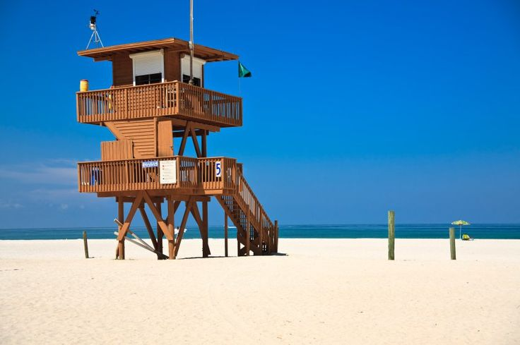 Sarasota uma pérola à beira do golfo do México                                                                                                                                                                                 Mais
