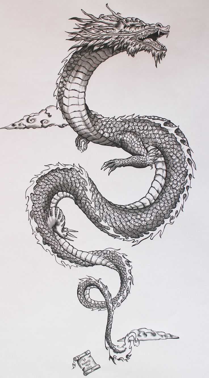 my personal interpretation of the traditional japanese dragon