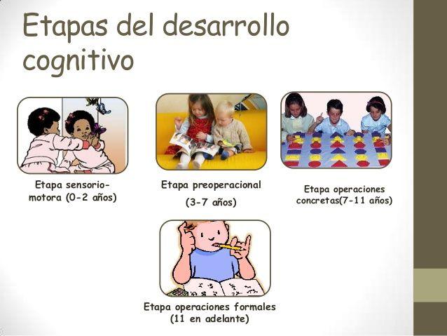 Desarrollo Cognitivo Desarrollo Cognitivo Etapas Del Desarrollo Recursos Educativos